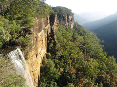 https://fantasywritersonretreat.files.wordpress.com/2010/01/11-fitzroy-falls.jpg