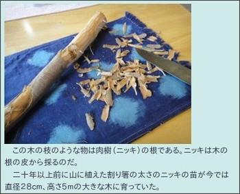 http://kamwy.blogzine.jp/kayak/2010/12/post_80ea.html