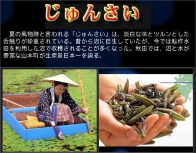 http://www.pref.akita.jp/fpd/shokubunka/shoku-21.htm