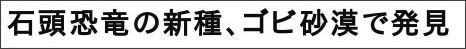 http://www.asahi.com/science/update/0826/OSK201108250173.html