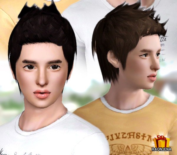 http://www.raonsims.com/item/detail2.php?num=74&cat1=1&page=1&key=
