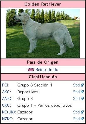 caracteristicas de perro: