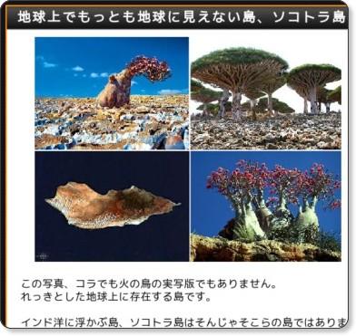 http://lllparopuntelll.blog118.fc2.com/blog-entry-502.html