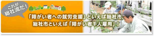 http://www.city.soja.okayama.jp/fukushi/shogaisha/senninkoyou/syougaisya_syurousyasuu.html