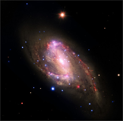 http://www.messier-objects.com/wp-content/uploads/2015/07/NGC-3627.jpg
