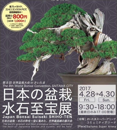 http://world-bonsai-saitama.jp/pdf/bonsa-collection-japan.pdf