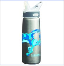 http://www.google.com/products/catalog?hl=en&q=camelbak+stainless+fabric&um=1&ie=UTF-8&cid=9781260517541040865&ei=Q9JBTdGzKoXLgQeiwvDtAQ&sa=X&oi=product_catalog_result&ct=result&resnum=3&ved=0CDQQ8wIwAg#