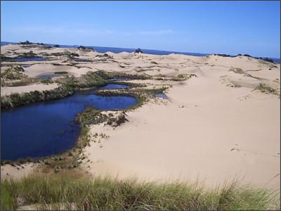 http://static.panoramio.com/photos/large/7887029.jpg