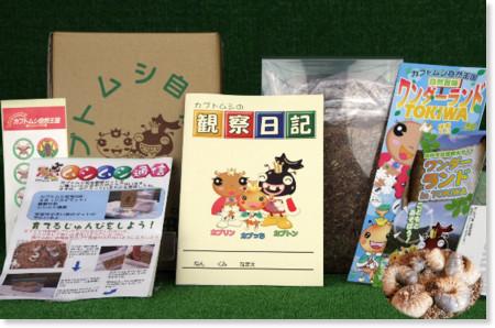 http://www.city.tamura.lg.jp/uploaded/attachment/10743.JPG