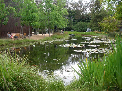 http://jkoyzw.bay.livefilestore.com/y1pya6nnIS3_LVEHVUxWGapw_9SyXfD27Cl7gNMlyj4iiWafvahOQ4f9ObnXoghxoBNgLhlMvqUyoyzEwWEWp9xtbnL05ML4h0z/LosAngeles_Pasadena_Museum_Garden.jpg