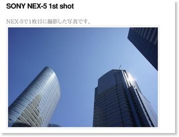 http://www.fotois.com/foto246/archives/2010/06/sony-nex-5-1st-shot.html