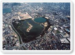 http://www.hyogo-tourism.jp/hanadokoro/sakura/index.php?sakuraspot&act=detail&id=200549