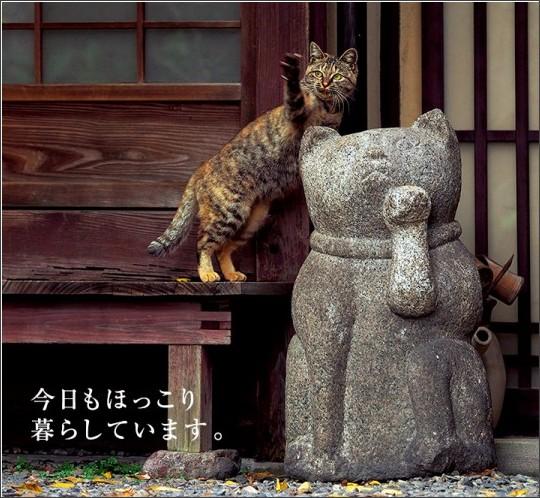http://mitsukoshi.mistore.jp/store/nihombashi/event/iwago/images/main_pic.jpg