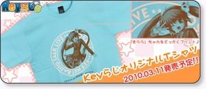 http://va.koubaibu.jp/user_data/key_radio.php