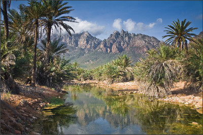 http://kamaleon.travel/wp-content/uploads/2013/01/Isla-de-Socotra-Yemen_05.jpg