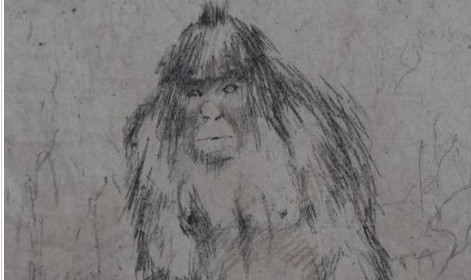 http://www.ghosttheory.com/2011/03/24/russian-scientists-setup-institution-for-yeti-research