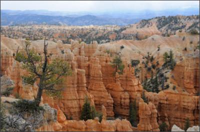 http://lh5.ggpht.com/_SQ5Npc1536Q/S-x6AHEEAwI/AAAAAAAAIDA/ycEu_AhykhA/s1600/2010-05-12-Utah-BryceNationaPark-FairyLandCanyon-09-58-06.JPG