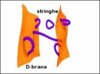 http://www.scienzenoetiche.it/synthesis/teoria_del_tutto/04_teoria_delle_stringhe.php