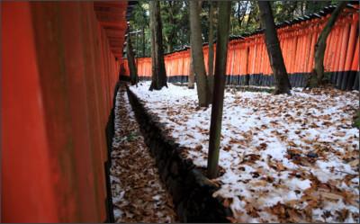 http://blogimg.goo.ne.jp/user_image/10/73/d4b59cd87de34996a5c87dce9e94c45e.jpg
