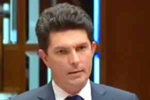 https://www.theguardian.com/australia-news/2017/jul/14/dual-citizenship-explainer-why-does-scott-ludlam-have-to-resign