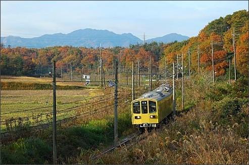 http://www.ohmitetudo.co.jp/railway/syasin/autumn/022.html