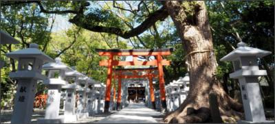http://www.kuzunohainari.com/wp/wp-content/uploads/2015/04/image-2.jpg