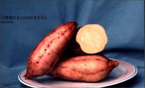 http://www11.synapse.ne.jp/satumaimo/order/gazou.cgi?id=27