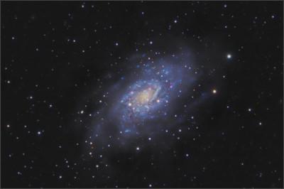 http://www.astronomersdoitinthedark.com/images/product/images/NGC2403-1260-East-20Da-NoFilt-1600-2011--COMBO-10-22-and-24---101x180----Final.jpg