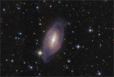 https://apod.nasa.gov/apod/image/0702/NGC2685_crawford.jpg