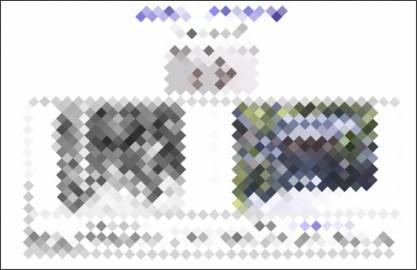 http://www.manshouji.com/harukana.htm