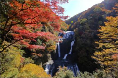 http://userdisk.webry.biglobe.ne.jp/002/107/09/N000/000/001/144654316610201093178_fukuroda_3201.JPG
