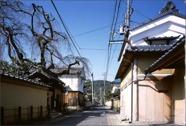 http://www.denken.gr.jp/photos/kamigamo_14.jpg