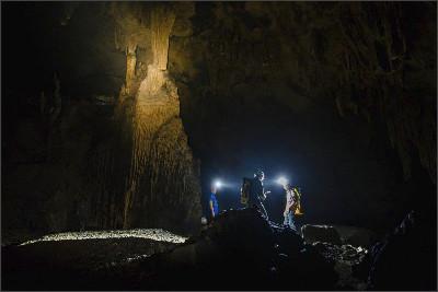 http://www.vietnamtoursguide.com/wp-content/uploads/2015/05/SongDoong-Cave-11.jpg