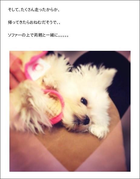 http://ameblo.jp/kobushi-factory/entry-12138799061.html
