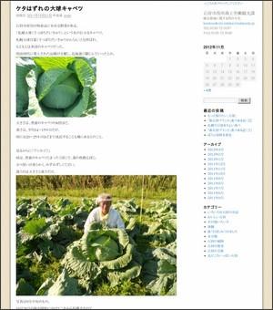 http://ishikari-pr.com/blog/?p=1826