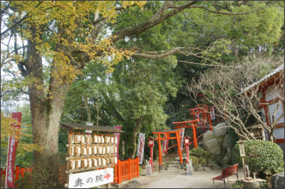http://livedoor.blogimg.jp/taiteiore-meisuiyugi/imgs/8/b/8bce94a9.jpg