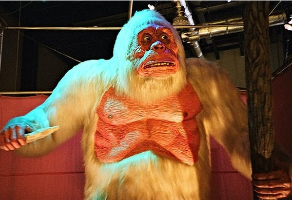 http://www.wired.co.uk/news/archive/2011-03/24/scientists-track-yeti