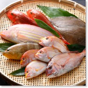 http://furusato-fukuchi.jp/tokuten/detail.html?id=a57e20a38a3446c9c33a6376eb97bf05