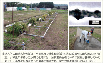 http://eco.nikkeibp.co.jp/article/report/20111209/110252/?P=1