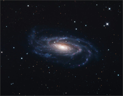 https://upload.wikimedia.org/wikipedia/commons/9/97/NGC_5033%2C_Schulman_Foundation_32_inch_telescope_on_Mt._Lemmon%2C_AZ.jpg
