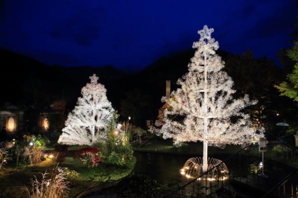 http://www.ciao3.com/garden/christmas/