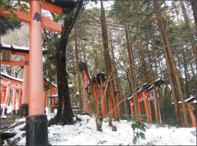 http://livedoor.blogimg.jp/nyabe0427-hsb/imgs/5/3/53d7a609.jpg