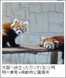 http://www.yomiuri.co.jp/national/news/20101201-OYT1T00088.htm