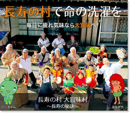 http://kanko.vill.ogimi.okinawa.jp/index.html