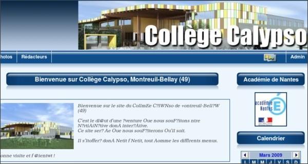 http://clg-calypso-49.ac-nantes.fr/