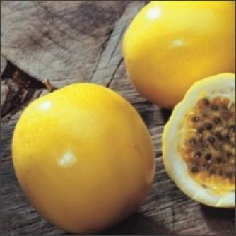 http://www.futaba-seed.co.jp/goods_image/A132_Z1.jpg