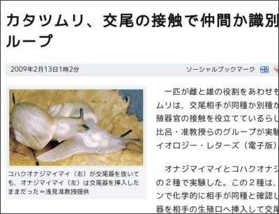 http://www.asahi.com/science/update/0213/TKY200902120329.html