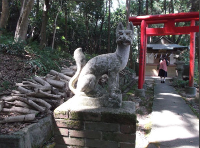 http://livedoor.blogimg.jp/sourasky/imgs/0/3/037a4bda.jpg