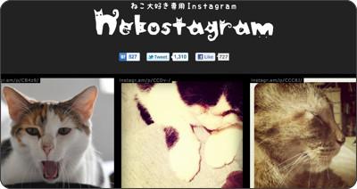 http://nekostagram.heroku.com/