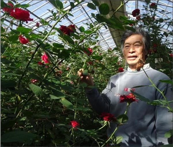 http://www.sankei.com/region/photos/141119/rgn1411190028-p1.html